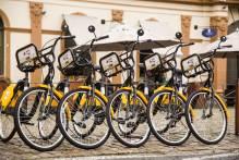 Dia Mundial da Bicicleta: Pelotas é referência no transporte de duas rodas