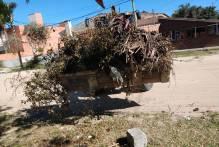 Ssui faz limpeza no Laranjal e avenidas no final de semana