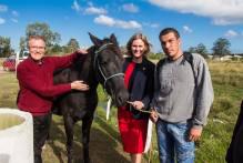 Projeto Adoção de Cavalos promove segundo evento do ano