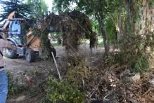 Mutirão de limpeza no Balneário dos Prazeres retira 52 cargas de entulho