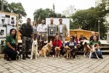Pelotas passa a contar com o selo 'Empresa Amiga dos Animais'