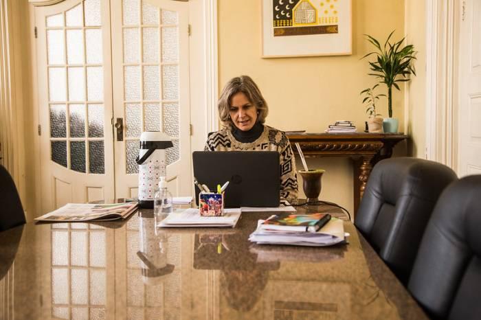 Paula dialoga sobre alternativas aos CTGs por videoconferência