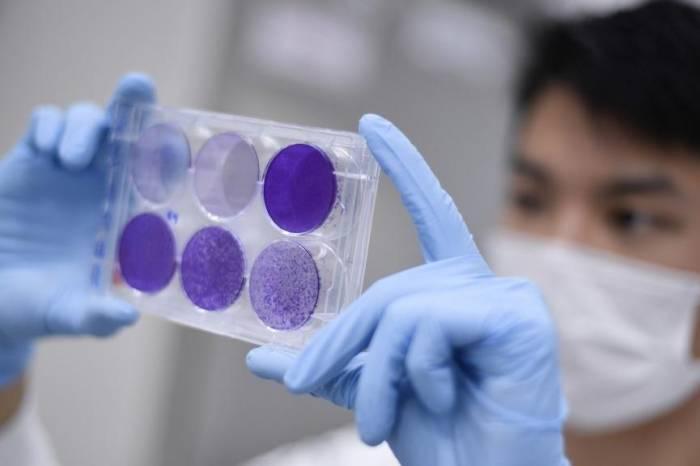 Boletim coronavírus nº 192 – 26/09/2020