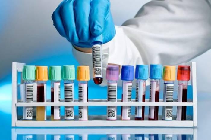 Boletim coronavírus nº 231 – 04/11/2020